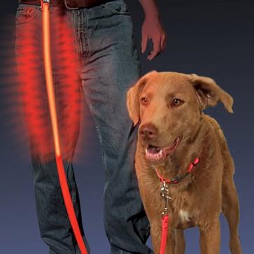 Correa para Perro Con LED - Nite Ize