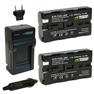 Pack de 2 Baterias y Cargador para Bateria Sony NP-F550 Wasabi 1