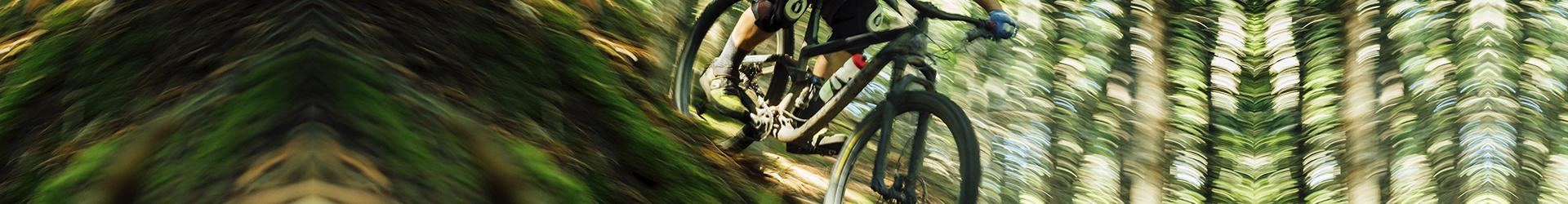 mantencion de bicicleta